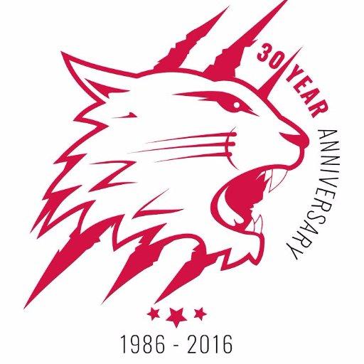 Swindon wildcats 30th anniversary