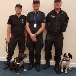 Roxy the rescue staffie with officers