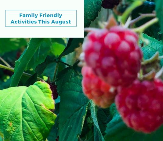Activities in Swindon this August Header