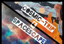 Cosmic-trip & Spacescape