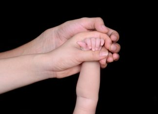 adult and baby hands
