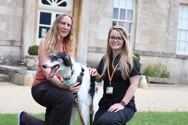 Council officers Alison Waine and Jordan McEwan with dog Mila