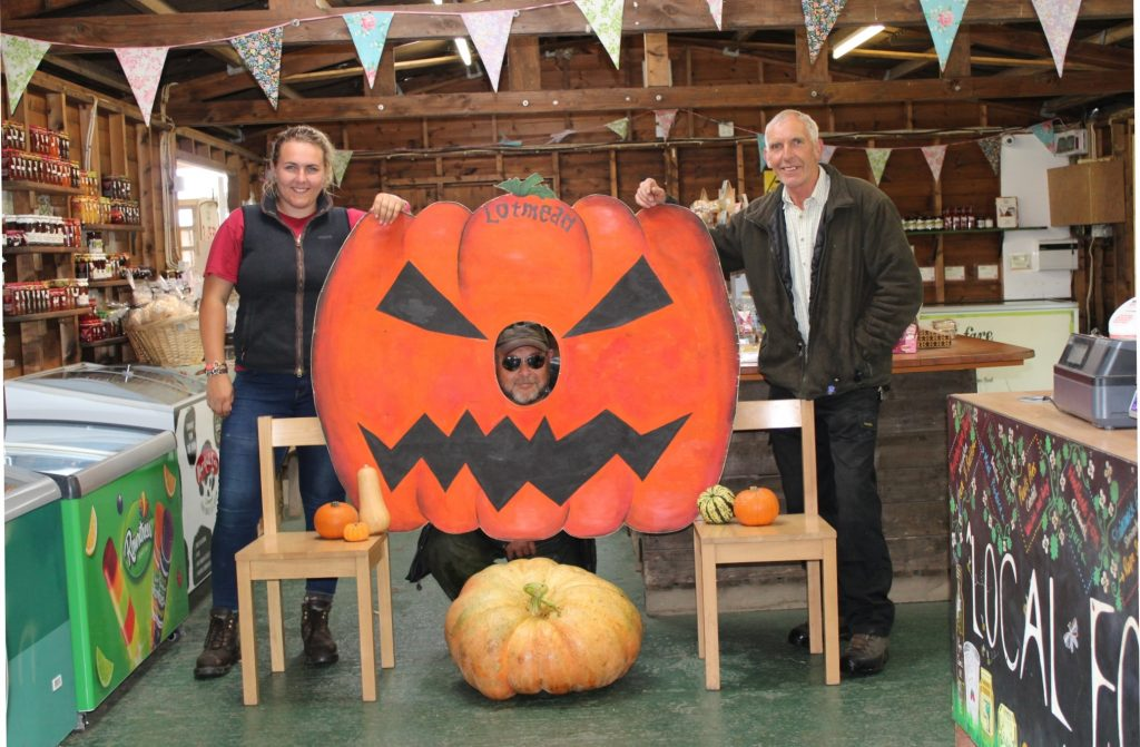 Lotmead Farm's Beth Meaden, Ed Boussen and John Meaden get ready for pumpkin season