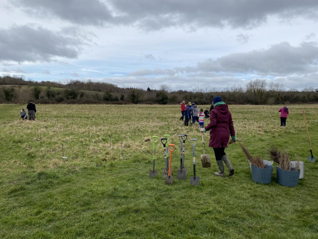 Highworth tree planting